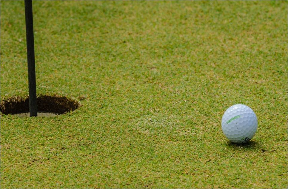 Grünfläche Analyse von Golfplatz
