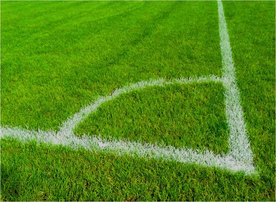 Grünflächen Analyse von Fußbalplätze